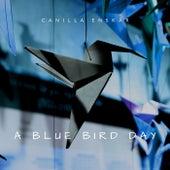 A Blue Bird Day di Canilla Enskär