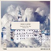 Castle in the Sky von Now O Later