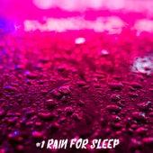 #1 Rain for Sleep by Rain Sounds (2)