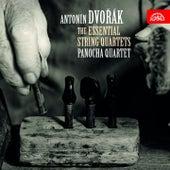 Dvořák: The Essential String Quartet by Panocha Quartet