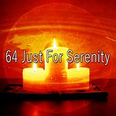 64 Just for Serenity by White Noise Research (1)