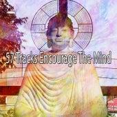 57 Tracks Encourage the Mind de White Noise Therapy (1)
