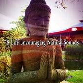 78 Life Encouraging Natural Sounds di Lullabies for Deep Meditation
