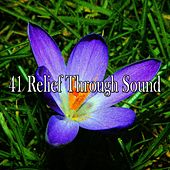 41 Relief Through Sound de Massage Therapy Music