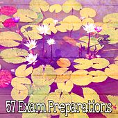 57 Exam Preparations de Massage Therapy Music