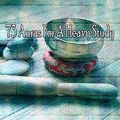 73 Auras for a Heavy Study von Japanese Relaxation and Meditation (1)