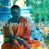 45 Inner Vibrance de Yoga Music