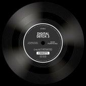 Digital Detox 3 by Igor Pumphonia
