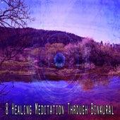 8 Healing Meditation Through Binaural de Binaural Beats Brainwave Entrainment