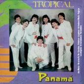 Ana María de Tropical Panamá