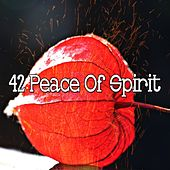 42 Peace of Spirit by Classical Study Music (1)