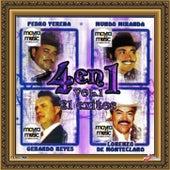 4 En 1, Volumen 1 by Vários Artistas