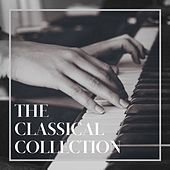 The Classical Collection de Classical Study Music, Classical Music Radio, Classical Music For Genius Babies