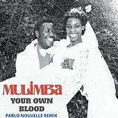 Your Own Blood (Pablo Nouvelle Remix) de Mulimba
