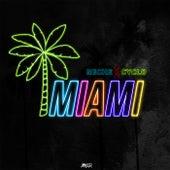 Miami de Reche