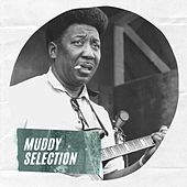 Muddy Selection de Muddy Waters