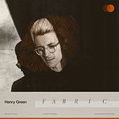 Fabric von Henry Green