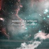 Sonidos que Intrigan: Oceano del Ambient de Various Artists