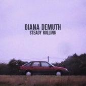 Steady Rolling von Diana DeMuth