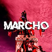 Marcho by Catoni