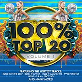 100% Top 20, Vol. 1 by Audio Groove