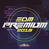 EDM Premium 2019 by Various Artists