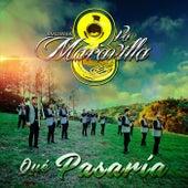 Qué Pasaria by Banda la Octava Maravilla
