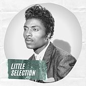Little Selection by Little Richard