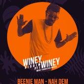 Nah Dem by Beenie Man