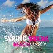 Spring Break Beach Party von Various Artists