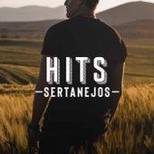 Hits Sertanejos by Various Artists