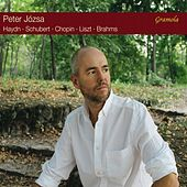 Haydn, Schubert & Others: Piano Works (Live) by Peter Józsa