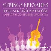 String Serenades, Vol. 2: Suk & Dvořák by Anima Musicæ Chamber Orchestra