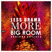 Less Drama More Big Room, Vol. 3 de Various Artists