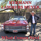 What Comes Next de Hermann Lammers Meyer
