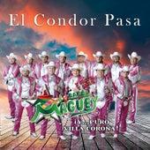 El Condor Pasa de Banda Maguey