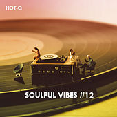 Soulful Vibes, Vol. 12 de Hot Q