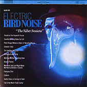 The Silber Sessions by Electric Bird Noise