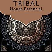 Tribal House Essential by Various Artists