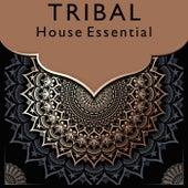 Tribal House Essential von Various Artists
