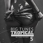 Big Tunes Tropical, Vol. 5 de Various Artists