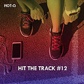 Hit The Track, Vol. 12 de Hot Q