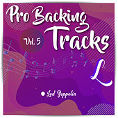 Pro Backing Tracks L, Vol.5 by Pop Music Workshop