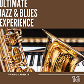 Ultimate Jazz & Blues Experience, Vol. 16 by Various Artists