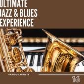 Ultimate Jazz & Blues Experience, Vol. 16 von Various Artists