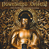 Downtempo Oriental (Ethnic Buddha Chillout Lounge Electronica) de Various Artists