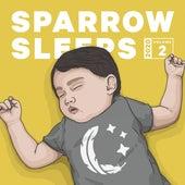 2020 Volume 2: Lullaby renditions of Hayley Williams de Sparrow Sleeps