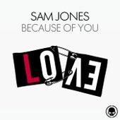 Because Of You de Sam Jones