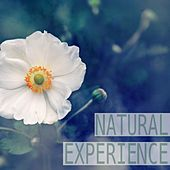 Natural Experience by Nature Sounds (1)