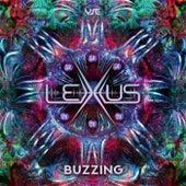 Buzzing by Lexxus